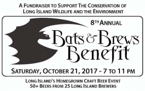 Bats and Brews Charity Festival - held 10/20/18